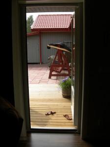 Rollo dörr innifrån.